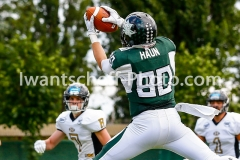 2018.07.01_Danube_Dragons_vs._M_dling_Rangers-17