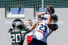 20190331_Danube-Dragons_vs_Steelsharks_Traun-47