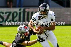 20190422_Swarco_Raiders_vs_Danube_Dragons-27