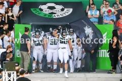 20190422_Swarco_Raiders_vs_Danube_Dragons-3
