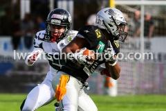 20190422_Swarco_Raiders_vs_Danube_Dragons-43