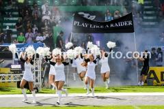 20190422_Swarco_Raiders_vs_Danube_Dragons-7