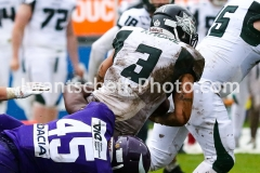 20190505_Vienna_Vikings_vs_Danube_Dragons-30