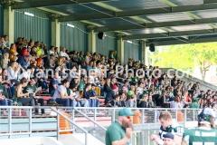 20190519_Danube_Dragons_vs._Amstetten_Thunder-37
