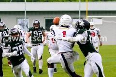 20190519_Danube_Dragons_vs._Amstetten_Thunder-47
