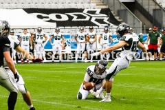 20190713_Playoff_Raiders_vs_Dragons-15