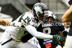 20190713_Playoff_Raiders_vs_Dragons-16