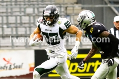 20190713_Playoff_Raiders_vs_Dragons-33