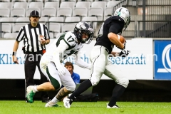 20190713_Playoff_Raiders_vs_Dragons-70