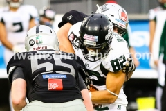 20190713_Playoff_Raiders_vs_Dragons-78